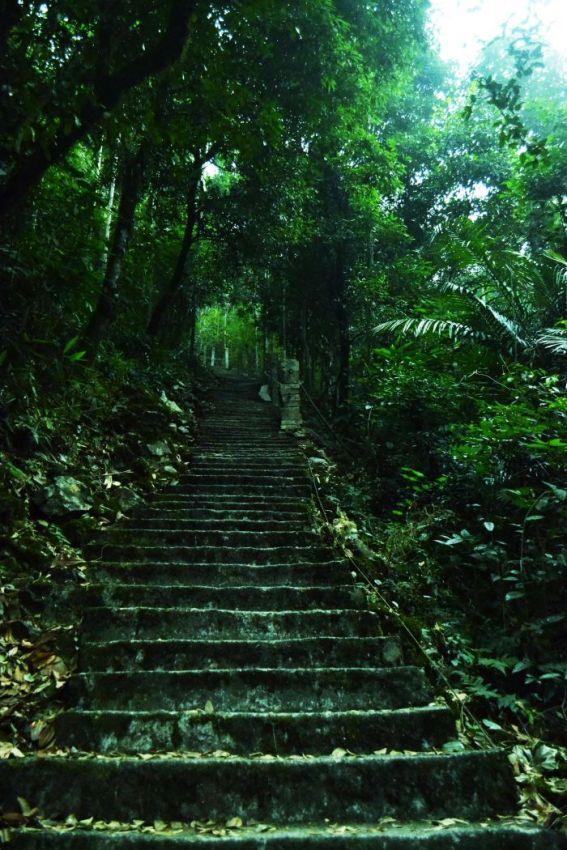 Meghalaya Trail
